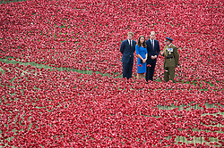 © London News Pictures. 05/08/2014. London, UK. The Duke and Duchess of Cambridge and Prince Harry visit the Tower of London's 'Blood Swept Lands and Seas of Red' poppy installation in the Tower of London's moat.  A total of 888,246 poppies are planted, with each flower representing a British military fatality from WWI.  Photo credit : Ben Cawthra/LNP