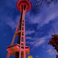 Ready for the New Year celebration as the Needle is lit up and party goers get into place!