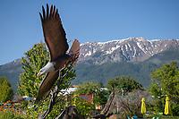 Bronze eagle sculpture Joseph Oregon