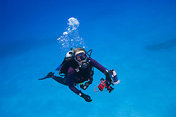 Woman scuba diver with underwater digital camera, West End, Grand Bahamas, Atlantic Ocean