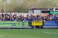 Where's Waly hiding in the crowd during the EFL Sky Bet League 1 match between AFC Wimbledon and Gillingham at the Cherry Red Records Stadium, Kingston, England on 23 March 2019.