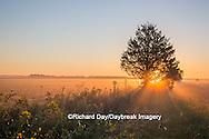 63893-02905 Sunrise at Prairie Ridge State Natural Area, Marion Co, IL