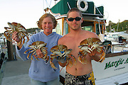 Dungeness Crabs, San Juan Islands, Washington<br />