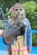 UNITED KINGDOM, London: 30 July 2019<br /> Lila Killingback, aged 7 and Alberta the Owl pose for a picture at London Zoo's new Animal Adventure Playpark. The new and exciting nature-inspired adventure-play destination officially opens to the public tomorrow on July 31st 2019.<br /> Credit: Rick Findler / Story Picture Agency
