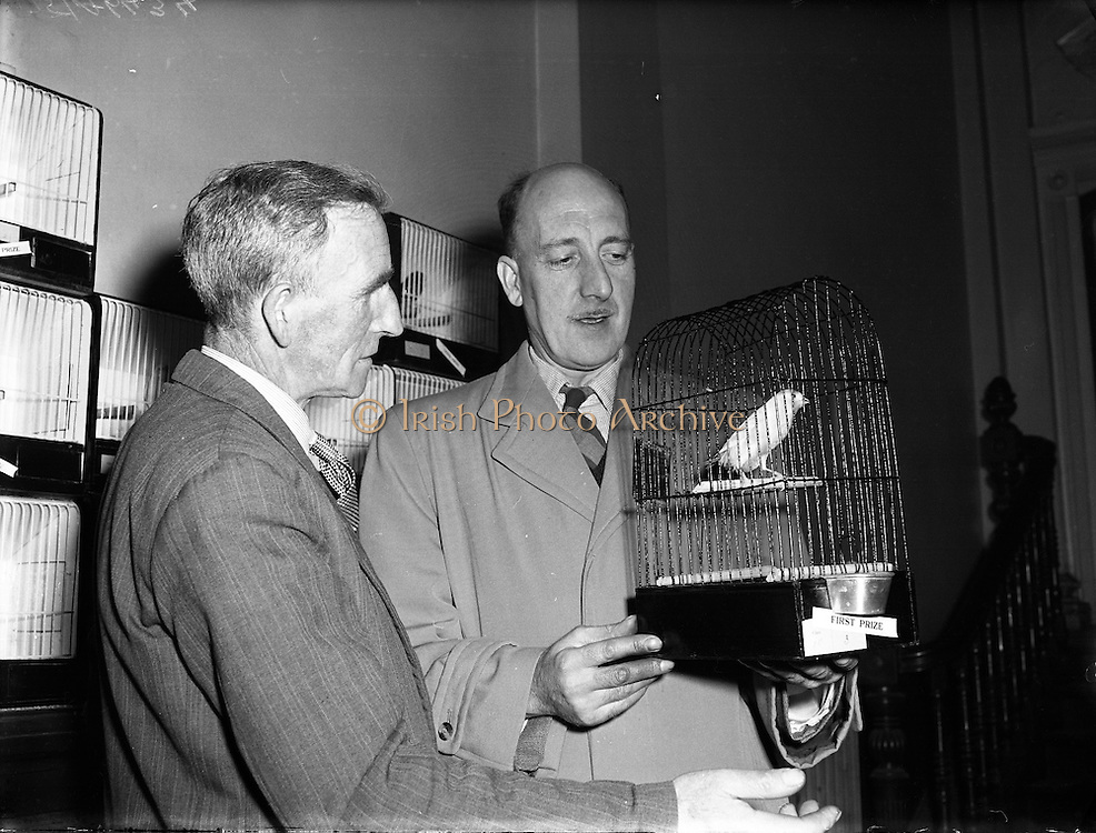 Canary and Bird Society of Ireland Annual Show.21/11/1956