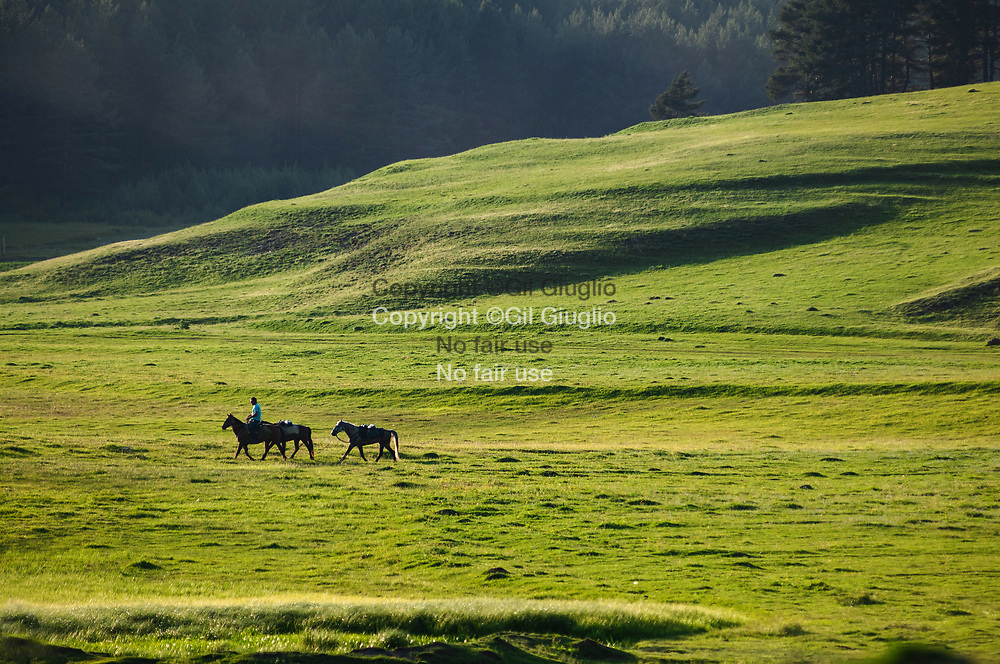 Georgie,, région Tucheti , plaines autour du village d'Omalo (région classée au Patrimoine de l'Unesco) //  Georgia,  Tucheti region, fields around Omalo (region at the World Heritage of Unesco)