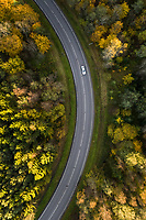 Aerial view of a car driving across the colorful nordic forest at fall in Estonia.