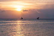 Dhows converge at sunset just off the coast from the islands main settlement Stone Town on 5th December 2008 in Zanzibar, Tanzania. Zanzibar is a small island just off the coast of the Tanzanian mainland in the Indian Ocean. In part due to its name, Zanzibar is a travel destination of mystical reputation, known for its incredible sealife on its many reefs, the powder white coral sand beaches and the traditional cultivation of spices.