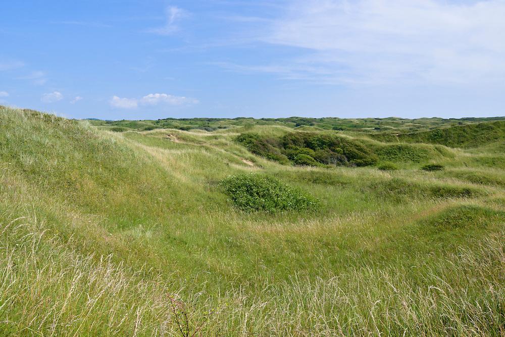 Dune slacks at Kenfig Nature Reserve, South Wales