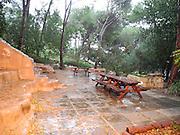 Eco Garden Organic gardening and farming project, Hiafa, Israel