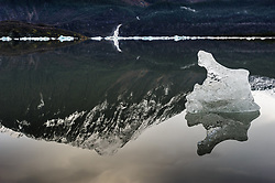 An iceberg floats in Mendenhall Lake located at the terminus of the Mendenhall Glacier. Also reflected in the lake is Bullard Mountain and Nugget Falls. The glacier runs roughly 12 miles, originating in the Juneau Icefield, near Juneau, Alaska. The glacier is located 12 miles from downtown Juneau. Each year, 465,000 curise ship passengers visit the Mendenhall Glacier.