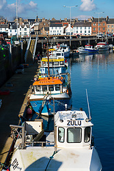 Row of fishing boats in harbour at Anstruther fishing village in East Neuk of Fife, Scotland, UK