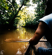 Paddling a canoe through rainforest at the Tortuguero National Park, East Coast, Tortuguera, Limon, Costa Rica