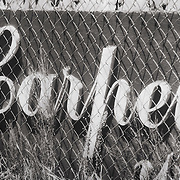 Old wooden sign reading Carpet resting in the weeds behind chain link fence.