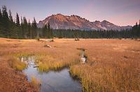 Alpenglow over Kangaroo Ridge and meadows of Washington pass, North Cascades Washington
