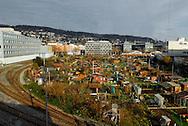 Sztadtleben Zurich