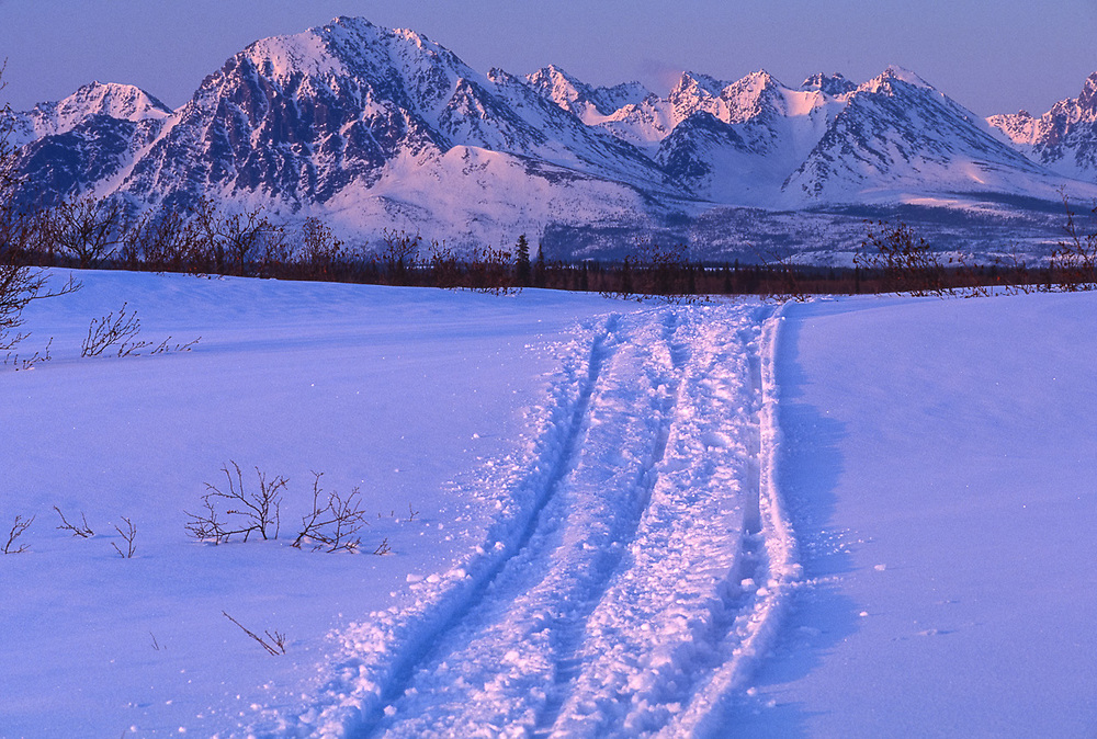 April landscape, dogsled tracks, evening light, Kobuk Valley National Park, Alaska, USA