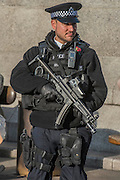 Armed police keep a watchful eye - Silence in the Square oraganised by the British Legion in Trafalgar Square  - 11 November 2016, London.