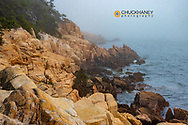 Granite Cliffs in the fog at Acadia National Park, Maine, USA