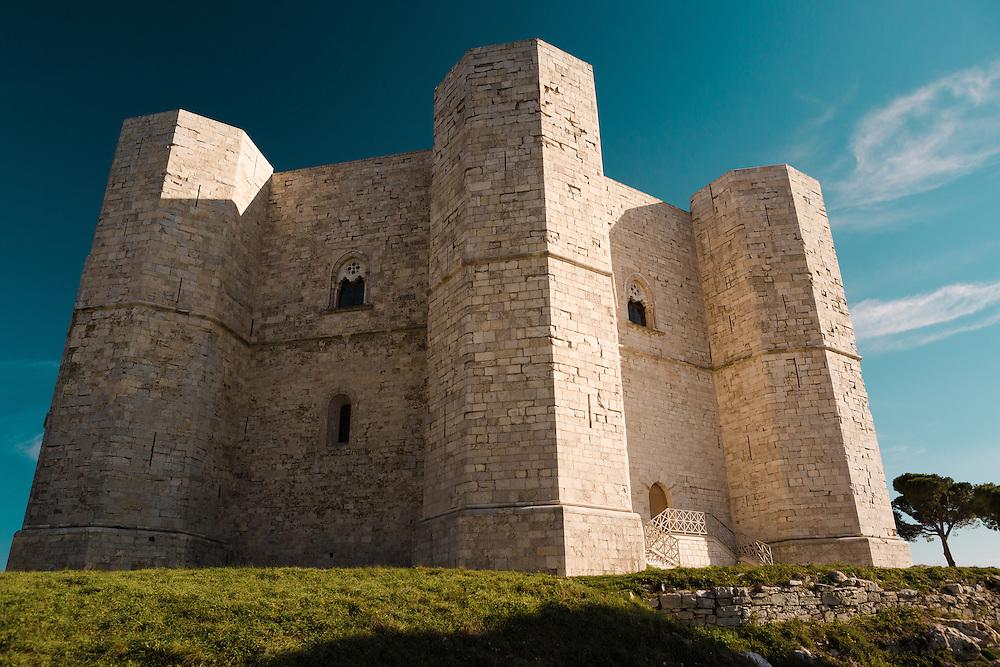 The Castle V