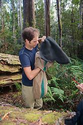 Sam Banks Transfering Possum From Trap