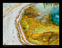 """""""Yellowstone Pool 01"""", 12 x 16 inches, acrylic on canvas. © Tim McGuire 2015"""