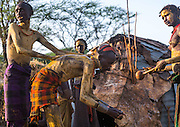 "The Time for Knives in Ethiopia<br /> <br /> The Dassanech live in southern Ethiopia. Dwelling in isolation along the Omo River, they have retained an ancestral way of life.<br /> They are called the ""People from the Delta"" in relation to the neighboring Turkana Lake but their world is actually one of desert, dust and acacia trees. Add to this hostile environment the rampant presence of malaria. The Dassanech encompass eight clans. Each possesses magical powers, such as making fire, keeping snakes away or making it rain...<br /> <br /> <br /> The entire lives of the Dassanech revolve around their cattle, their only wealth. It provides meat, milk – which is essential during times of drought – and skins used as clothing and sleeping mats. The number of cows indicates their owner's social status. Despite their isolation, the Dassanech do not live in peace – their livestock remain under the threat of constant raids by the neighbouring tribes.<br /> <br /> And that is not folklore meant to impress the rare tourists who venture into these areas. Bloody clashes take place regularly, often with the Turkana tribe. Civil war is raging in southern Sudan nearby and Kalashnikovs sell for only $50. One only needs to take a look at the number of men with scars on their torsos, a sign that they have killed an enemy, to understand the ferocity of the fighting. There are hundreds of deaths every year. Kill a man and you will be a hero among the Dassanech.<br /> <br /> To become a man, one must go through the ceremony of the Dime. It takes place every year in June. It is the most important ritual in the lives of young Dassanech. This is the time for circumcision for boys and excision for girls. The time for knives, as the elders say.<br /> <br /> Testimonies about this ceremony are rare and for a good reason: the elders are reluctant to let foreigners attend the Dime. Even the few educated local Dassanech guides who live in the village of Omorate always come up with a good excuse not to go there or pretend to ignore the right places or dates.<br />"