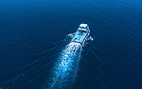Aerial view of a boat / dhoni leaving the harbour of the local / inhabited island  Mathiveri, Maldives, Alif Alif Atoll, Indian Ocean
