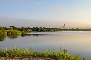 Swan, Sunrise, Main Beach, East Hampton, NY