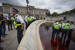 © Licensed to London News Pictures.  26/08/2021. London, UK. An activist is detained after members of Extinction Rebellion  stained Victoria Memorial with artificial blood in front of Buckingham Palace in central London. Photo credit: Marcin Nowak/LNP