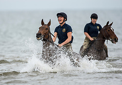 © London News Pictures. 20/09/2017. The King's Troop Royal Horse Artillery training on Holkham beach at Bodney Camp, Norfolk as part of their Regimental training, which is impossible to carry out at their London based barracks. Almost 100 horses from The King's Troop will be staying in Norfolk this month. Photo credit: Sgt Rupert Frere/LNP