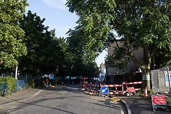 London, UK. 14th August, 2021. A view of trees alongside Melon Road close to Peckham Green, some of which are expected to be felled by Southwark Council. Peckham Green is a 1.4-acre public park off Peckham High Street, one of the most polluted roads in London, in a borough which is ranked fifth-worst in London and eighth-worst in the UK for easy access to green space, and local residents and campaigners have been protesting that they were not consulted by Southwark Council in relation to plans to develop it as public housing.