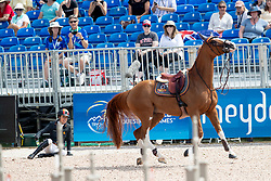 Cordon Pilar, ESP, Grand Cru vd Rozenberg<br /> World Equestrian Games - Tryon 2018<br /> © Hippo Foto - Dirk Caremans<br /> 19/09/2018