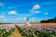 LISSE - Tourist between the flowerfields in the netherlands ROBIN UTRECHT