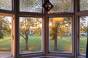 The sunlit view of a park, ash trees and distant houses, seen from a suburban bay window in south London, on 6th June 2021, in London, England.