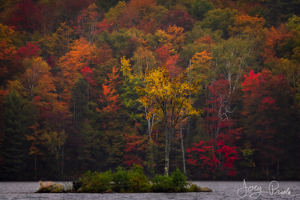 Fall colors on a small island and the surrounding hillsides on a misty October day in Vermont.