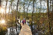 Promenade dans les Marais de Lavours, Ceyzerieux, Bugey, Ain. // Hiking in the Marais de Lavours, Ain, France.