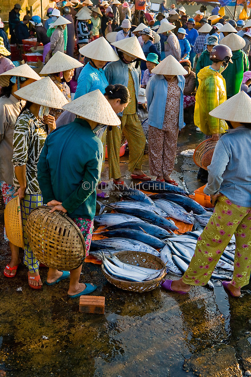 Inspecting fish at Hoi An's early morning fish market.