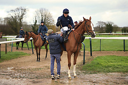 23rd November 2017 - Michael Owen Horse Racing - Former footballer Michael Owen receives help from trainer Tom Dascombe before he takes to the gallops at Manor House Stables in Cheshire ahead of his first ever race as a jockey - Photo: Simon Stacpoole / Offside.