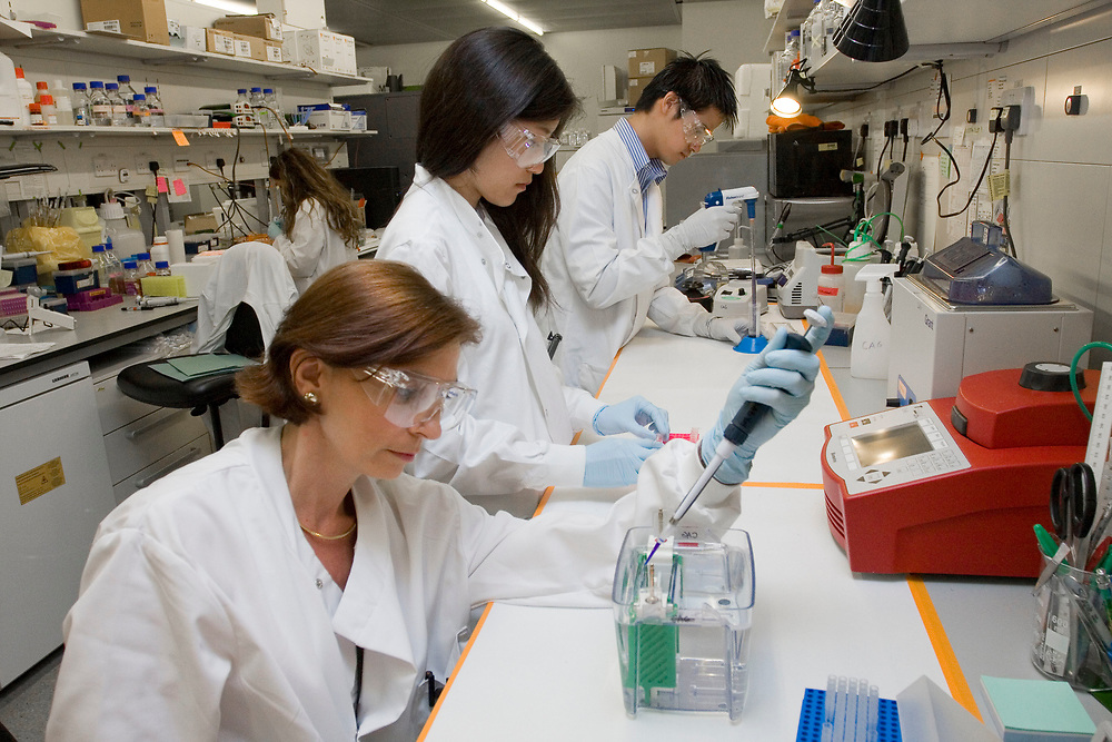 Research Department of Cancer Biology, UCL Cancer Institute