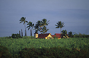 Church in sugar cane field, Waimea, Kauai<br />