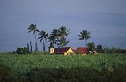 Church in sugar cane field, Waimea, Kauai<br />