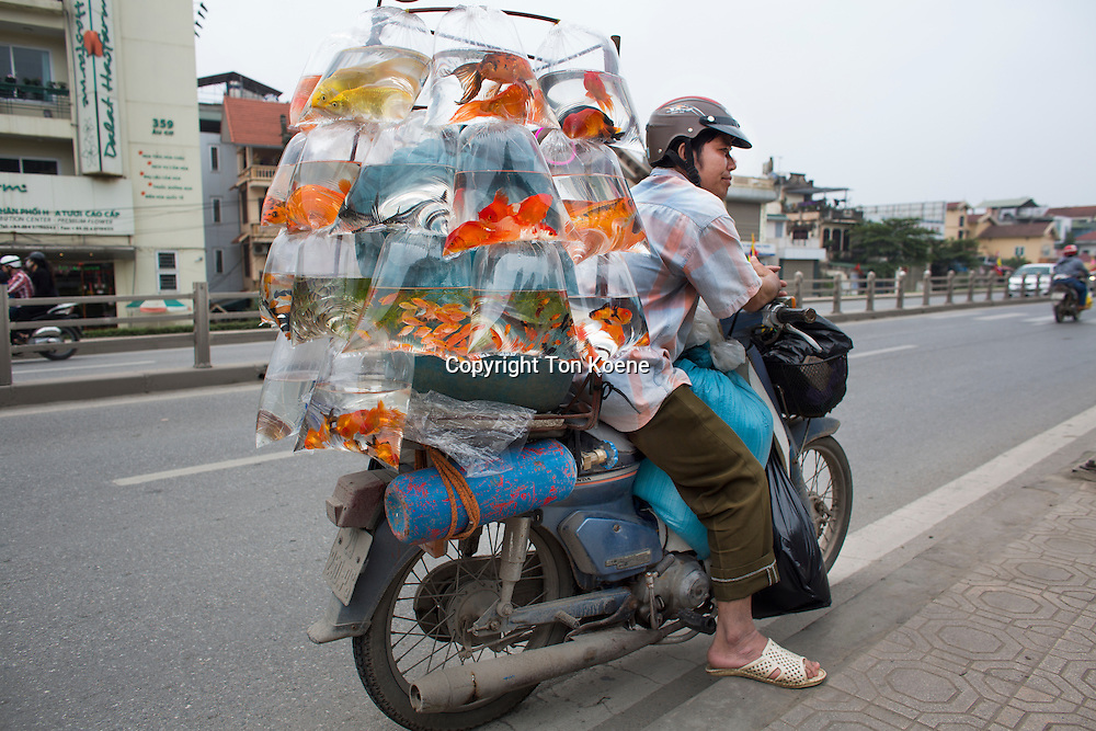 Motorbikes are the main means of transport in Vietnam.