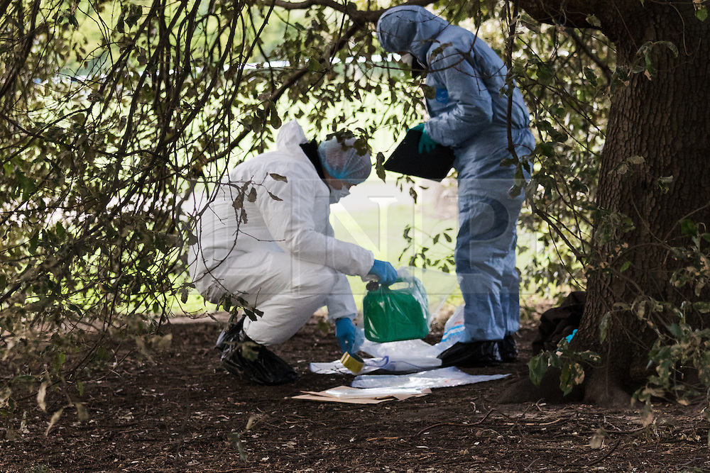 © Licensed to London News Pictures. 09/02/2016. London, UK. Police forensic officers working under a tree near Kensington Palace in west London, collecting items including a petrol can and personal effects. A man set himself on fire and died after burning to death in the early hours of this morning near Kensington Palace. Photo credit : Vickie Flores/LNP