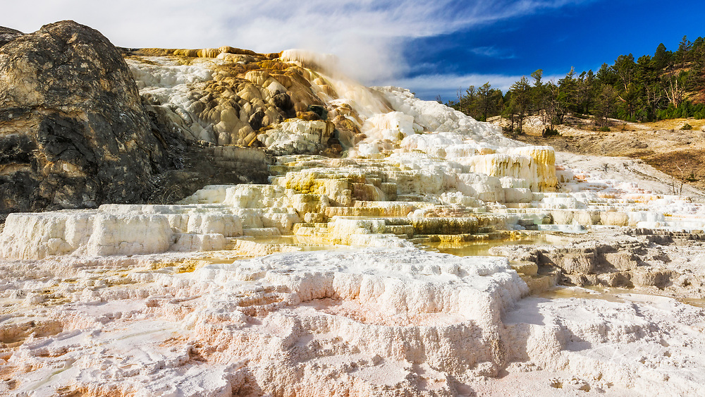 Travertine terraces at Minerva Spring, Mammoth Hot Springs, Yellowstone National Park, Wyoming USA