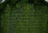 Gravestone in Aberdeen, Scotland. 19th Century