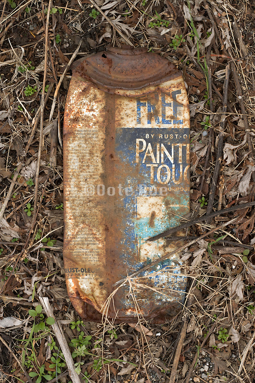 an old rusty spray painting can laying between fresh sprouting grass