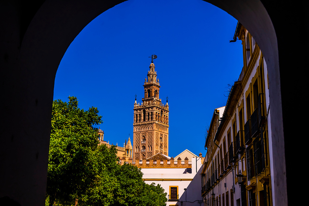 The Giralda Tower and the Seville Cathedral seen from the Alcazar Palace, Seville, Andalusia, Spain.