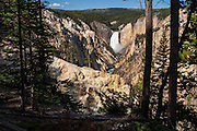 Lower Falls of the Yellowstone from Artists Point