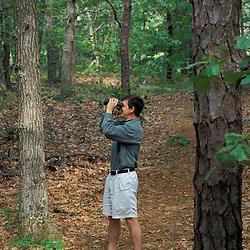 Harwich, MA.Birdwatching in the oak-pine forest near the Monomoy River (a.k.a. Muddy Creek) in Harwich on Cape Cod.